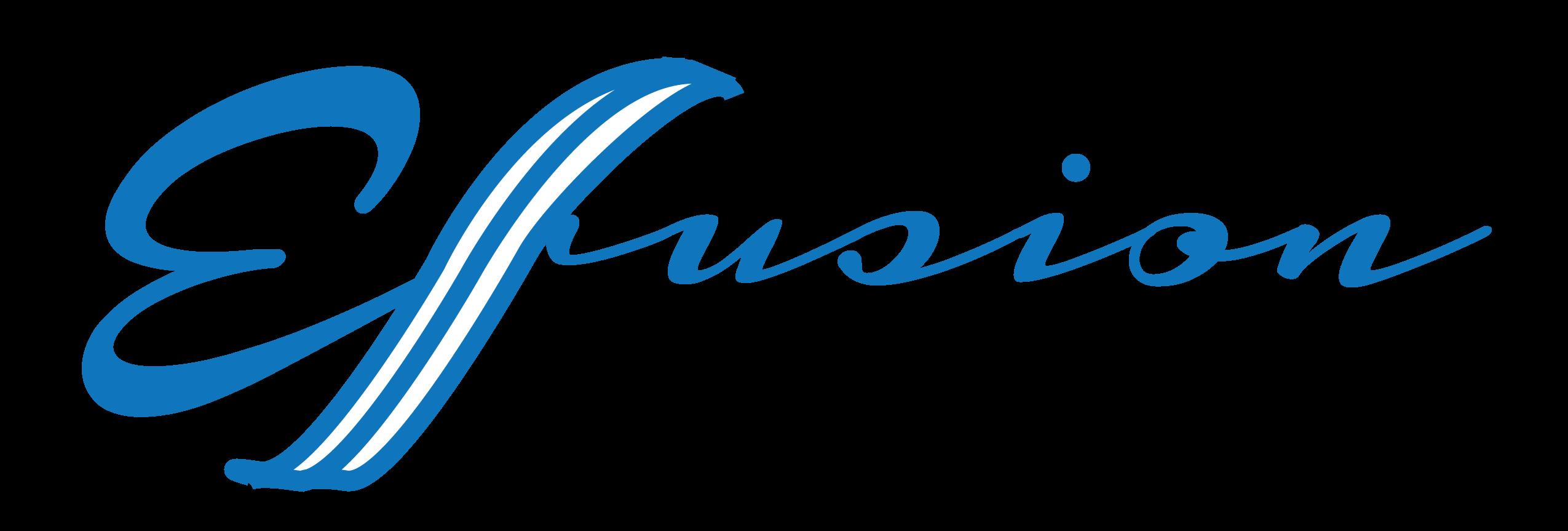 Efusion Media Group